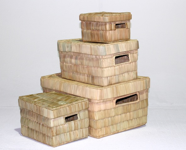Storage-box-with-lid